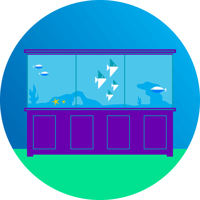What is Schoolbox?